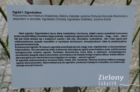 DSC_7420