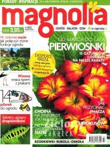 magnolia nr3/2013